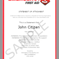 Emergency Certificate Sample